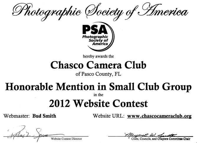 Chasco Web Site Award cropped